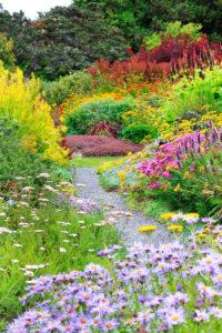Perennial garden, Mendocino Coast Botanical Gardens, Fort Bragg, Calif.
