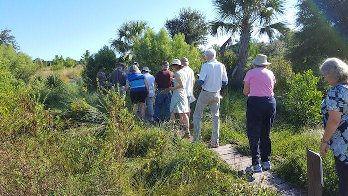 Tour walking through Maritime Forest, South Carolina Botanical Garden, Clemson, S.C.