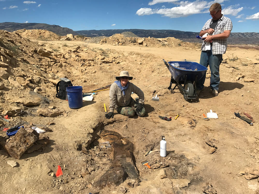 Dr. Victoria Egerton and professor Phil Manning at work at Wyoming fossil site. Credit: The Children's Museum of Indianapolis Jurassic