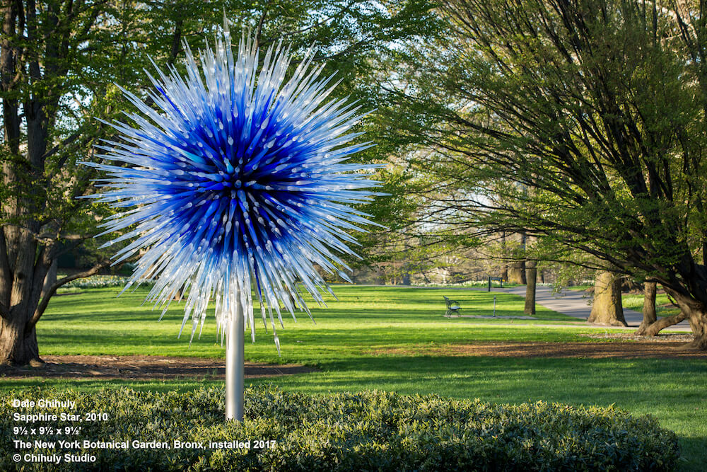 Dale Chihuly, Sapphire Star, 2010, 9 1/2 x 9 1/2 x 9 1/2', The New York Botanical Garden, Bronx, installed 2017, (c) Chihuly Studio Chihuly Cheekwood