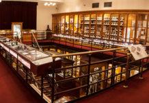Mütter Museum overview