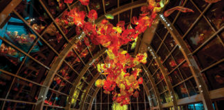 art chihuly museum museums