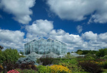 Meijer Gardens Conservatory Butterfly