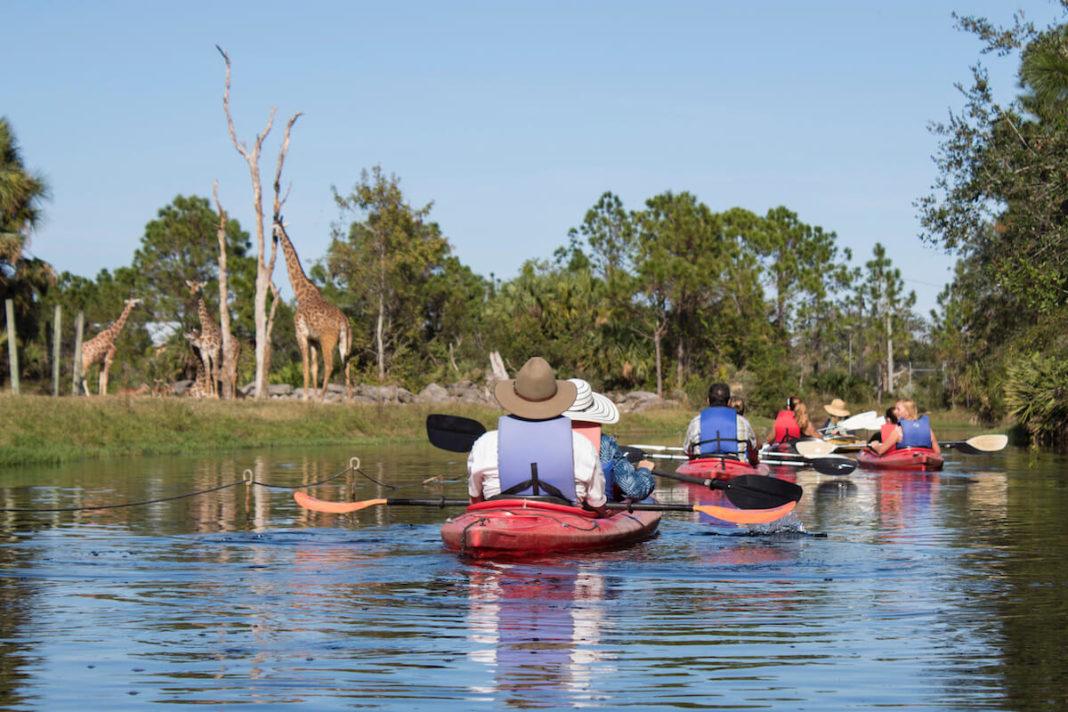 Kayaking at Brevard Zoo
