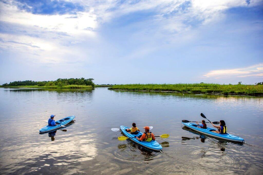 Kayaking on America's Amazon, Mobile, Alabama